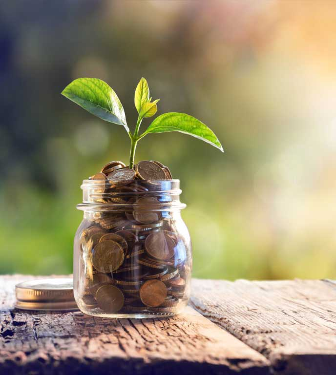 Financial Planning with Wealth Management Resources